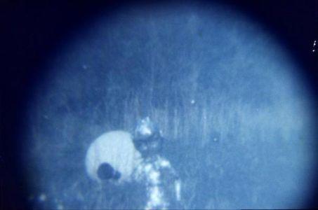 Photographie argentique couleur d'un extraterrestre.