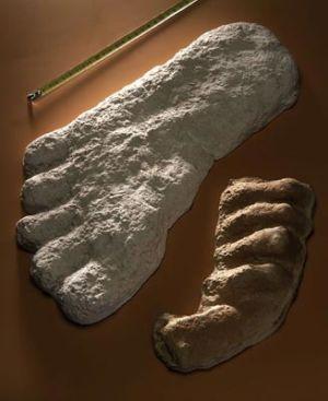 Empreintes de bigfoot.